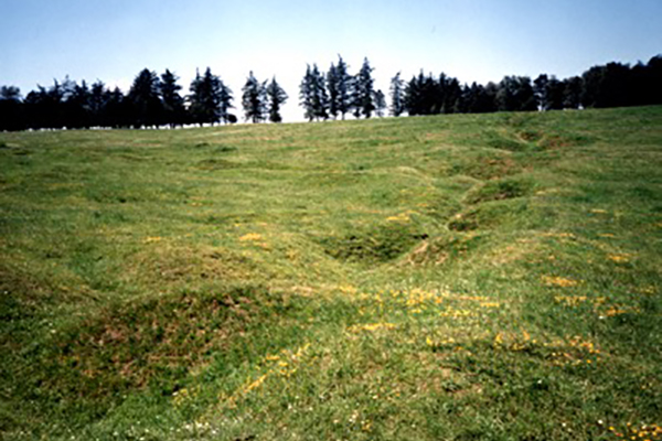 Trench line at Newfoundland Park